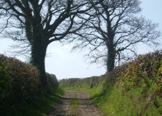 Beaworthy, Großbritannien