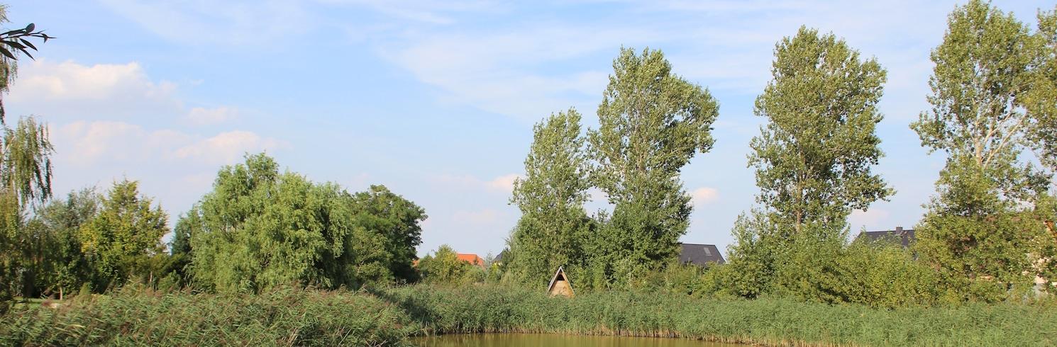 Köthen (Anhalt), Németország