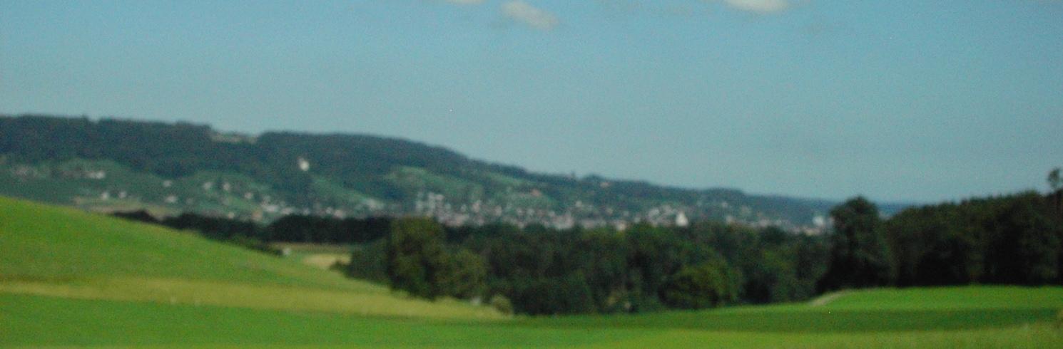 ميرشتيتين, سويسرا