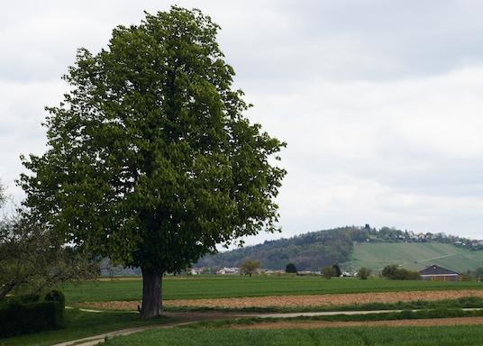 Winnenden, Germany