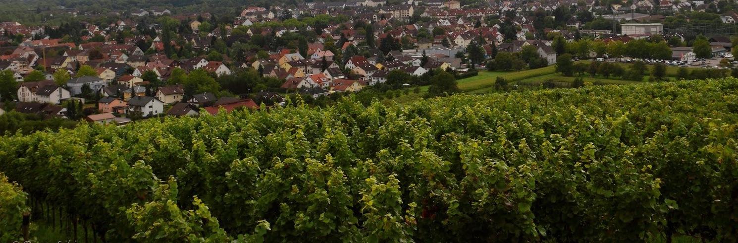 Binzen, Almanya