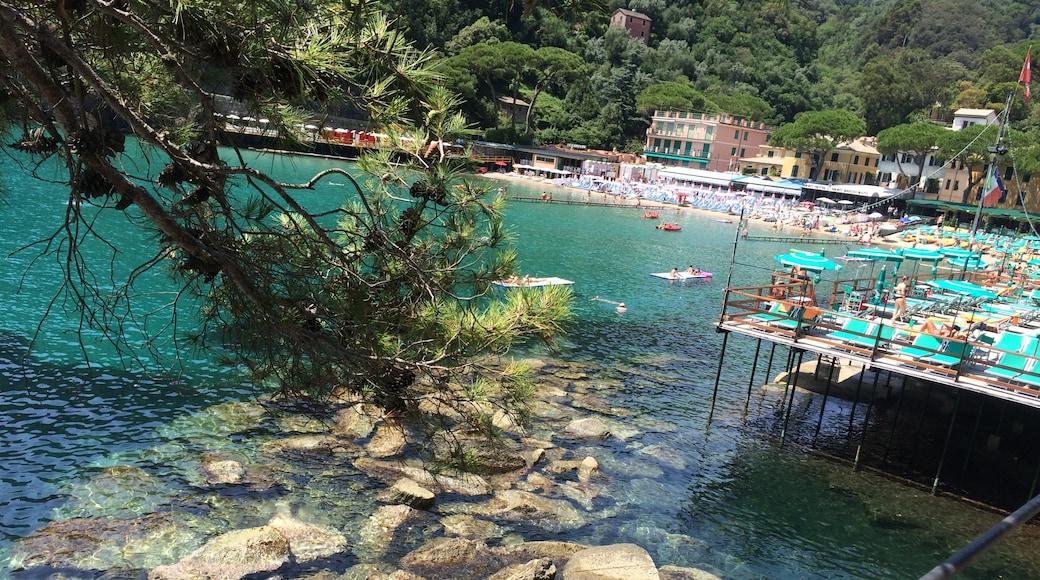 "Foto ""Paraggi"" von Liguria Pics (page does not exist) (CC BY-SA)/zugeschnittenes Original"