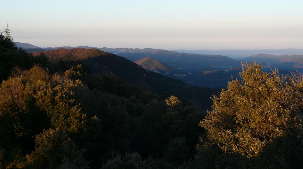 """""""Montseny""""-foto av Pere prlpz (CC BY-SA) / Urklipp från original"""