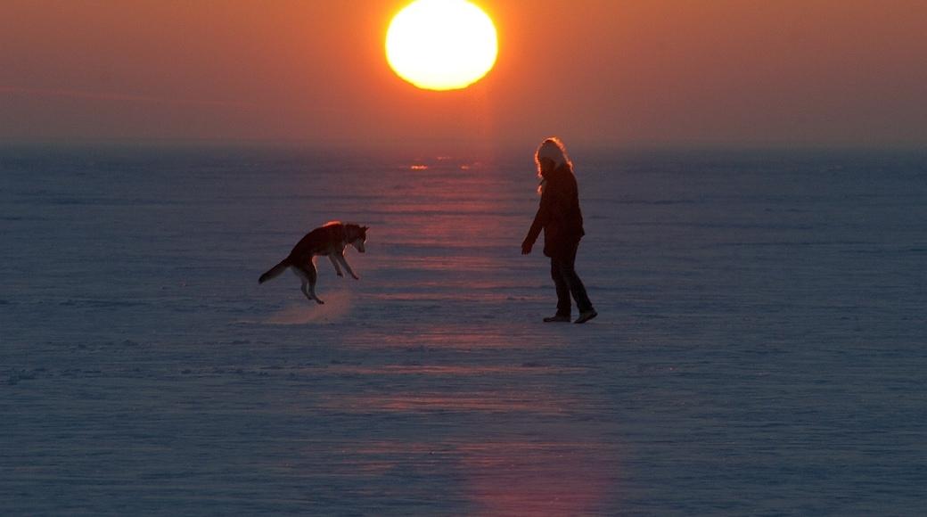 """Foto """"Stettiner Haff"""" von Sun-Ra (CC BY-SA)/zugeschnittenes Original"""