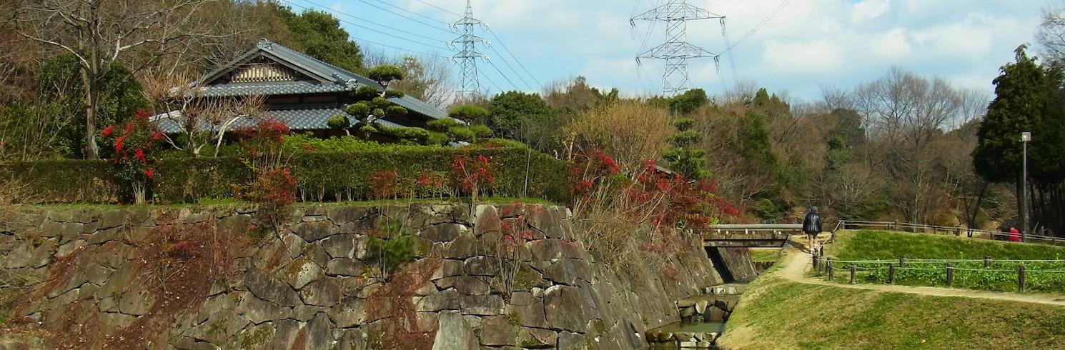 Tondabajašis, Japonija