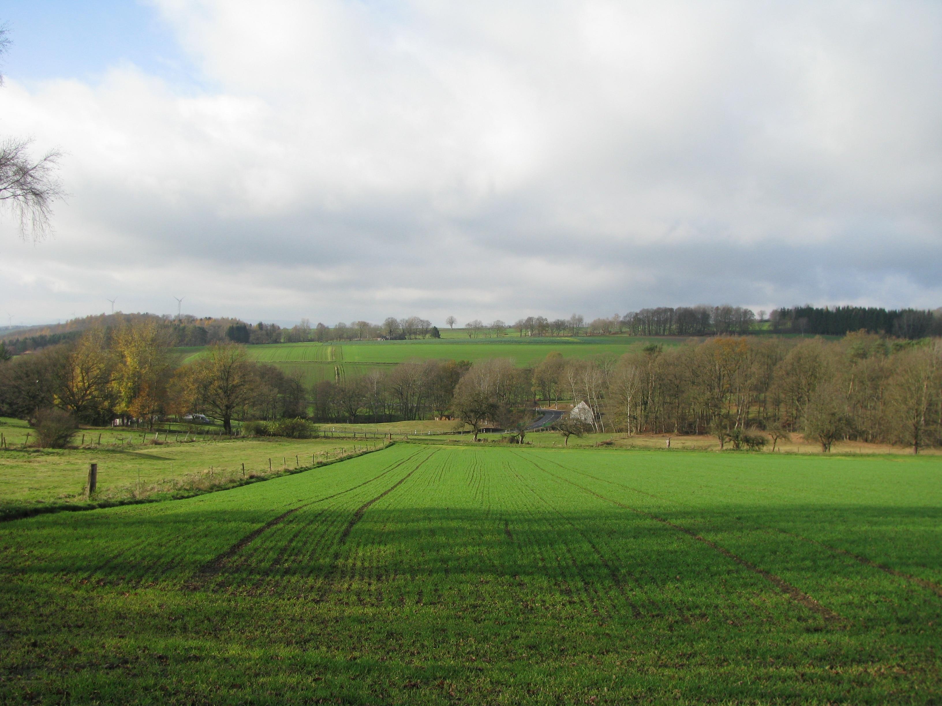 Staufenberg (Lower Saxony), Lower Saxony, Germany