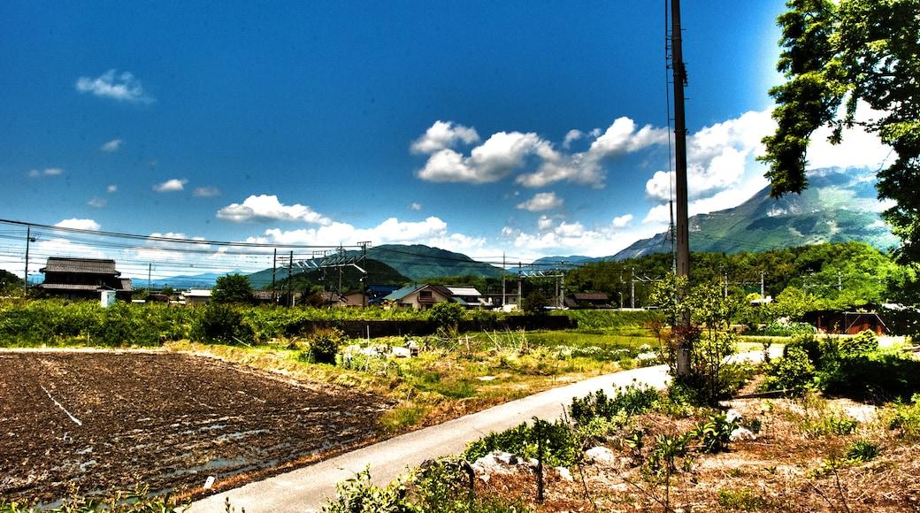 "Photo ""Maibara"" by Eshin Kunishima (CC BY-SA) / Cropped from original"