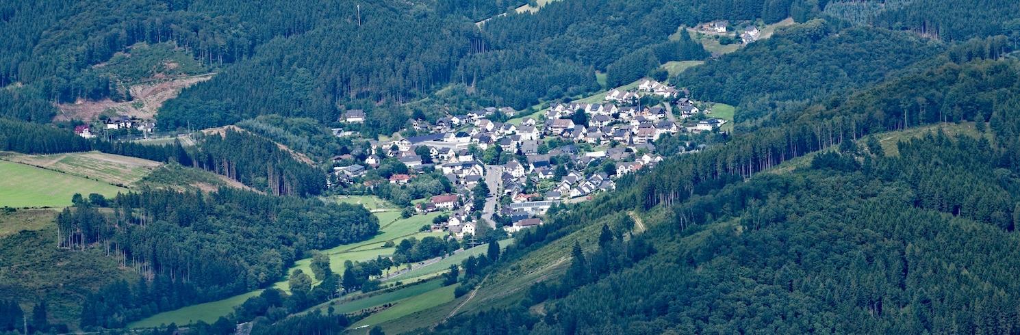 Lennestadt, Duitsland