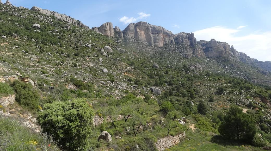 "Photo ""La Morera de Montsant"" by EliziR (CC BY-SA) / Cropped from original"