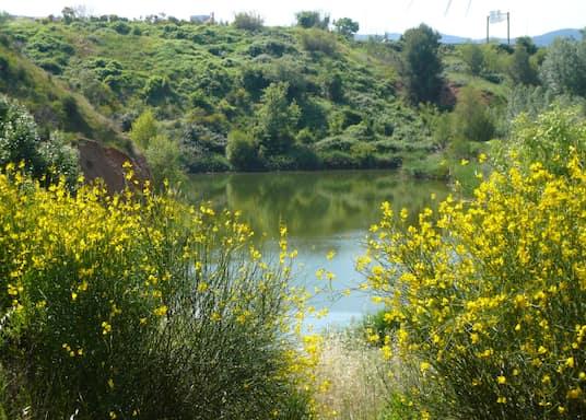 Sant Cugat del Valles, Tây Ban Nha