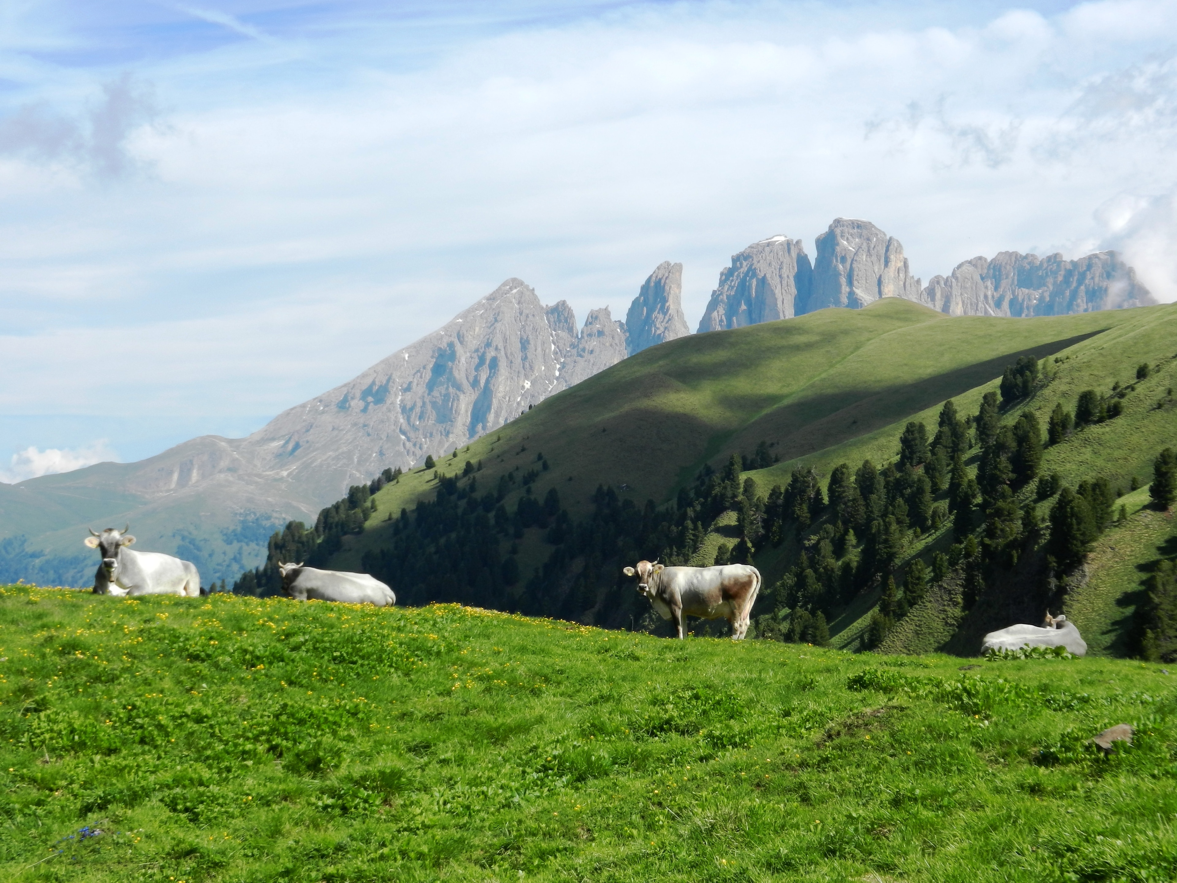 Mazzin, Trentino-Alto Adige, Italy