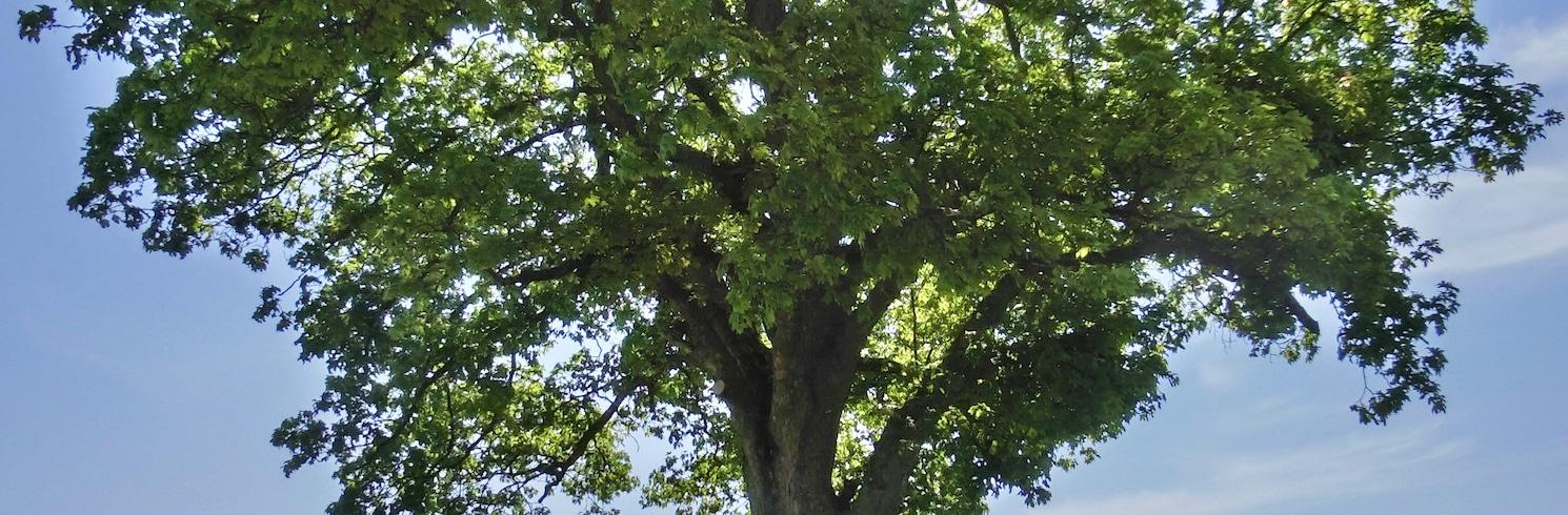 Gefrees, Tyskland
