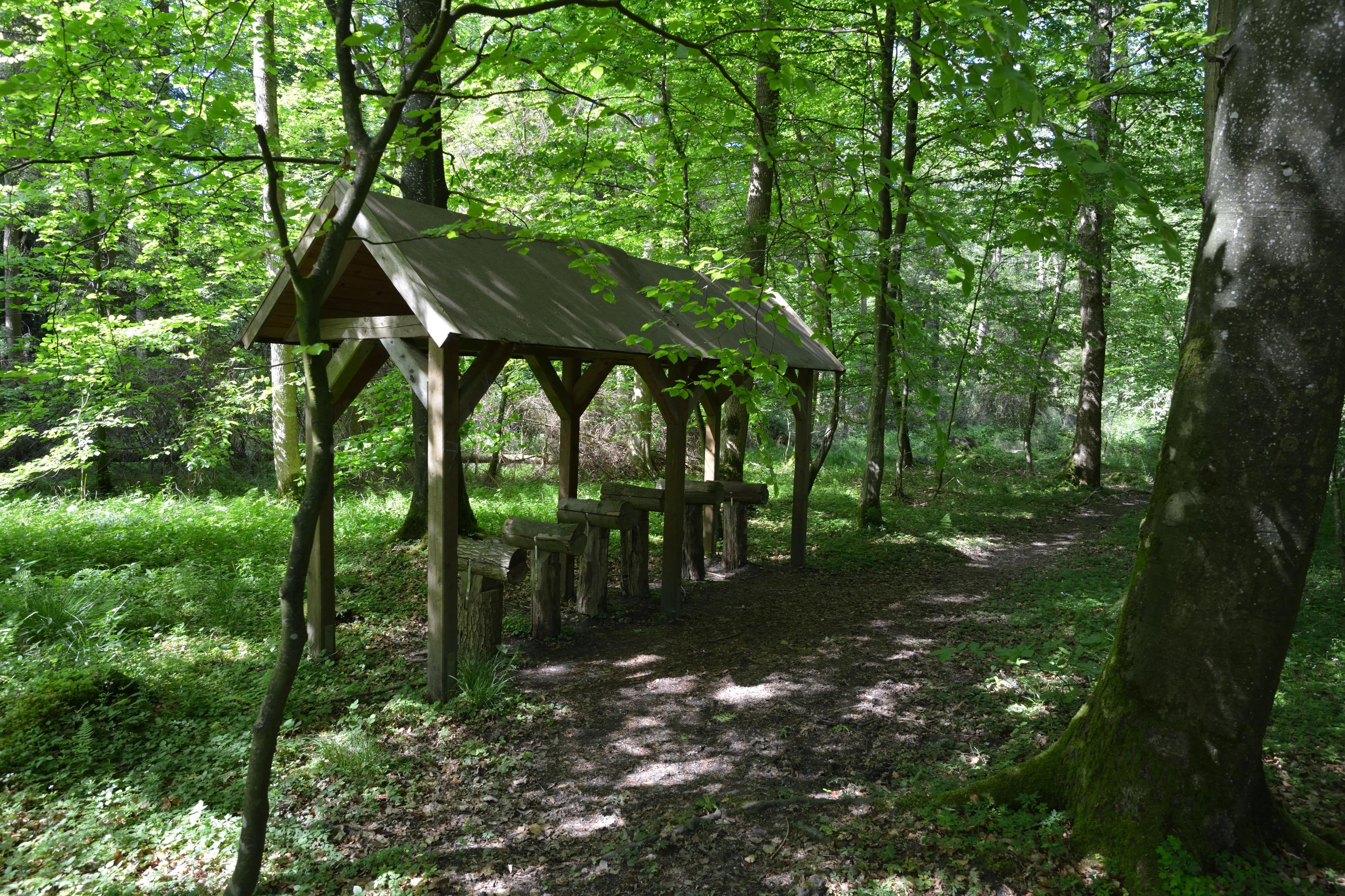 Schwabstedt, Schleswig-Holstein, Duitsland