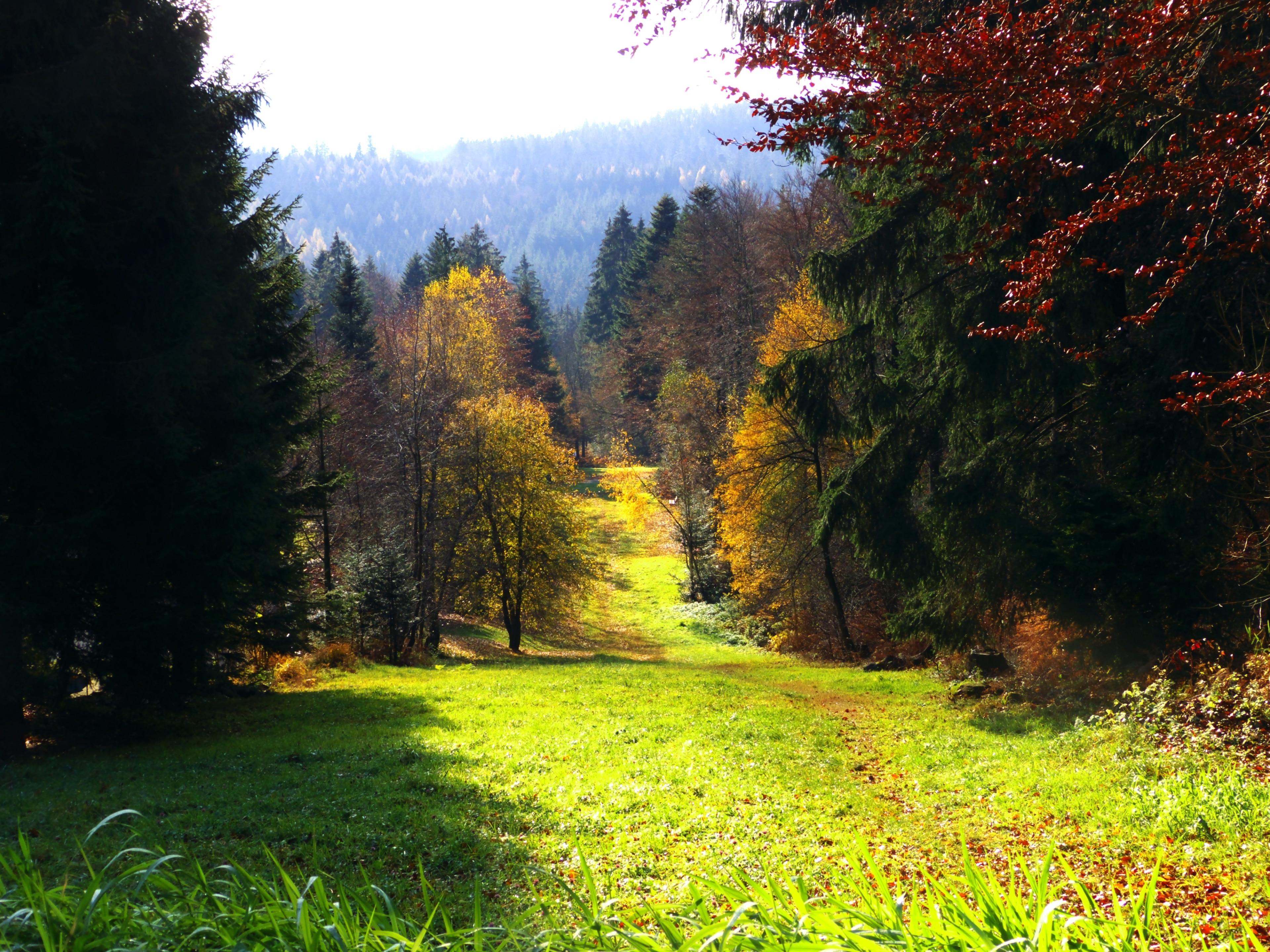 Dobel, Baden-Wuerttemberg, Duitsland