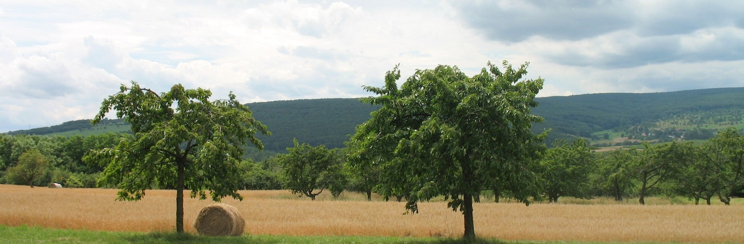 Mossig et du Vignoble, Francia