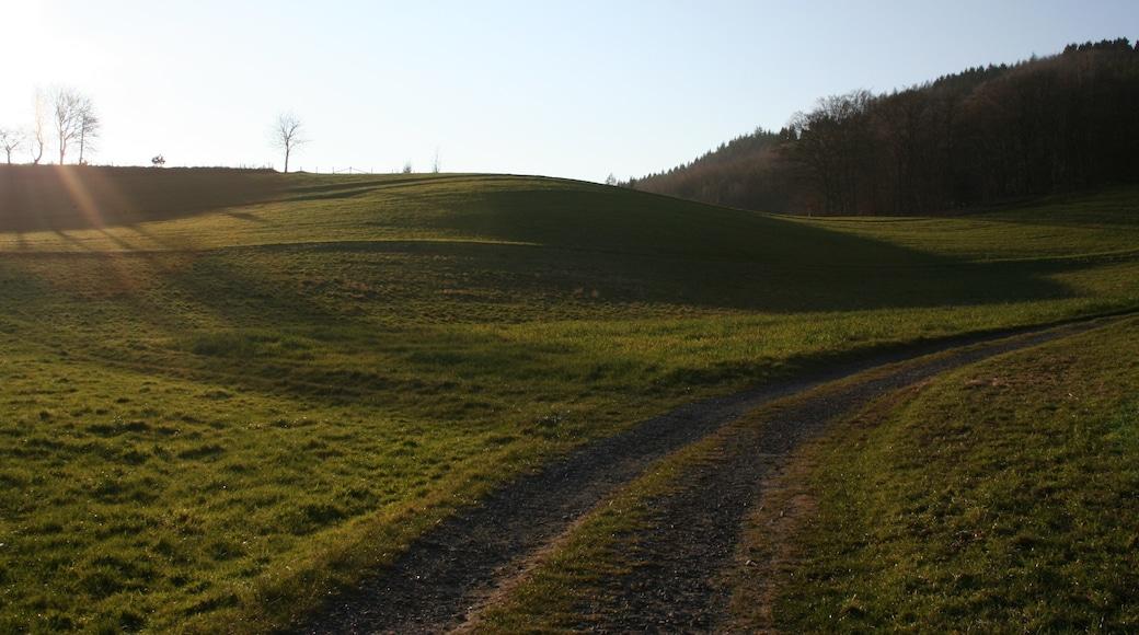 "Photo ""Seeheim-Jugenheim"" by Bernd Unger (CC BY-SA) / Cropped from original"