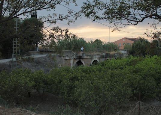 Javalí Viejo, İspanya