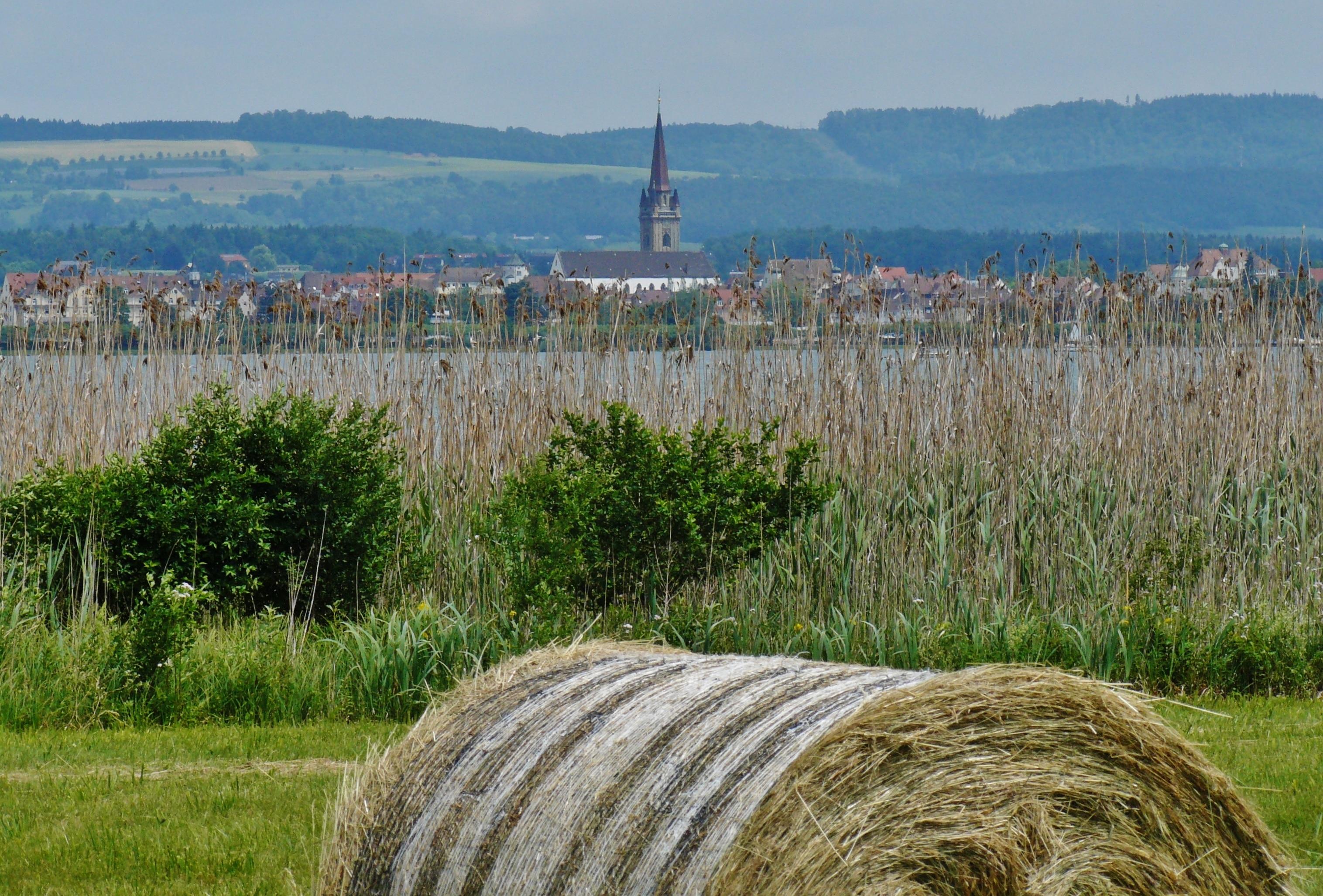 Moos, Baden-Württemb