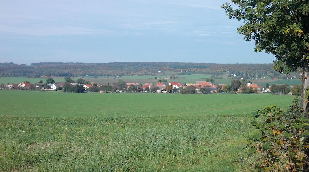 """Foto """"Freyburg"""" von Jwaller (CC BY-SA)/zugeschnittenes Original"""