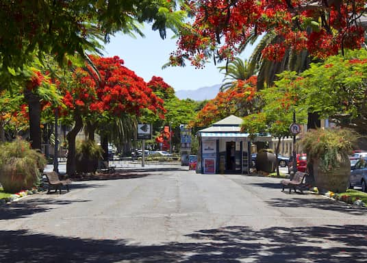 Santa Cruz de Tenerife, Spania