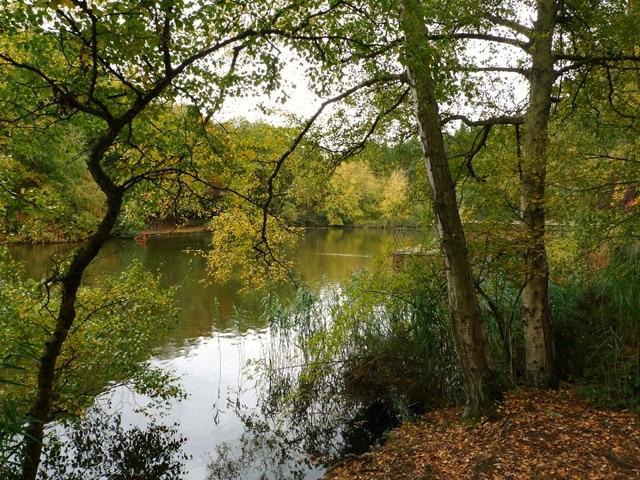 Stockgrove Country Park, Leighton Buzzard, England, Großbritannien
