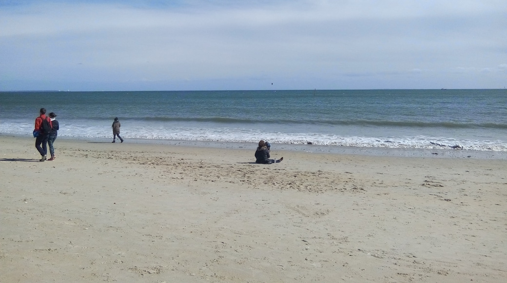 "Photo ""Carnac Beach"" by chisloup (CC BY) / Cropped from original"