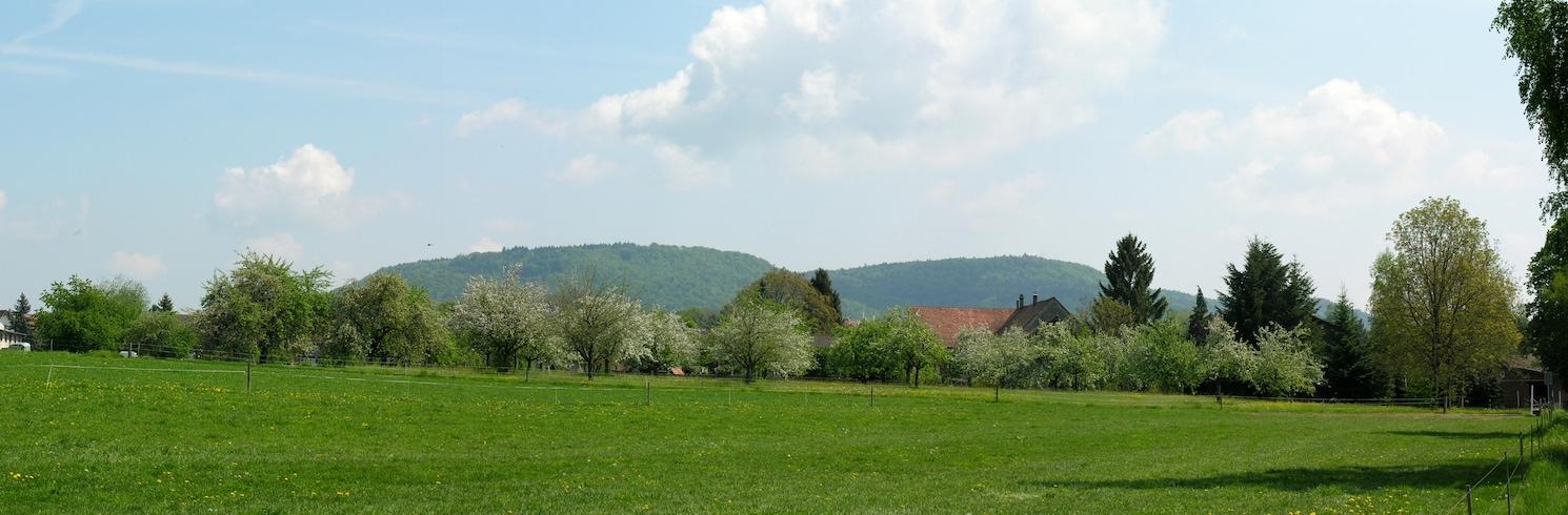 Basadingen-Schlattingen, Switzerland