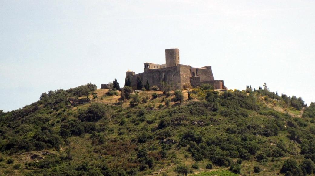 «Plage de Collioure», photo de Enfo (CC BY-SA) / rognée de l'originale