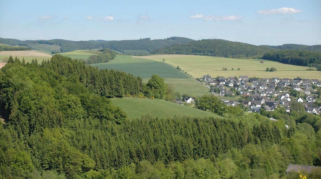 """Foto """"Schmallenberg"""" von Axel Schwenke (CC BY-SA)/zugeschnittenes Original"""