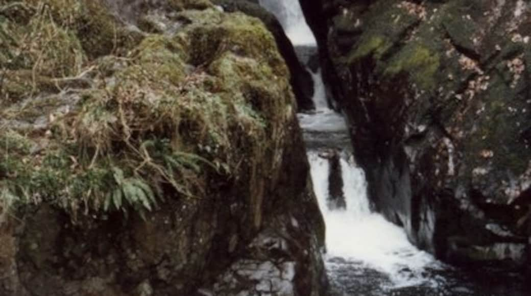"""Photo """"Aira Force"""" by Elliott Simpson (CC BY-SA) / Cropped from original"""