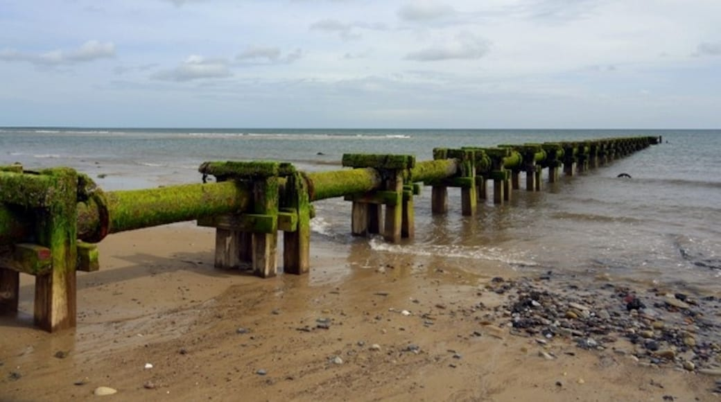 """Photo """"Druridge Bay Country Park"""" by Andrew Curtis (CC BY-SA) / Cropped from original"""