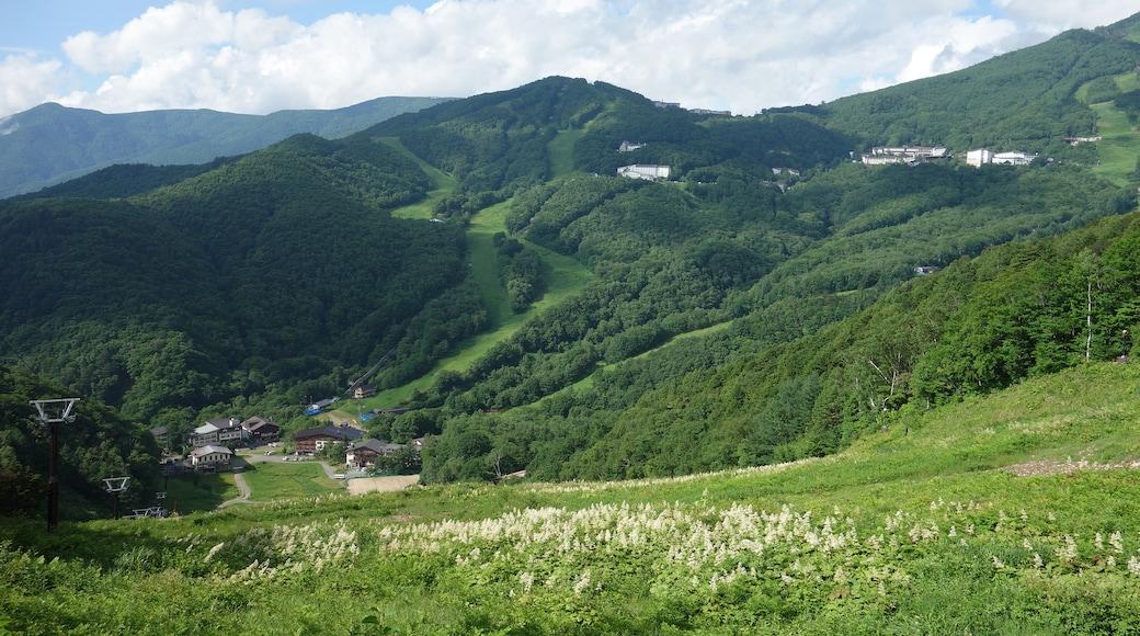 690 Noda (CC BY) 的「志賀高原」相片 / 裁剪自原有相片