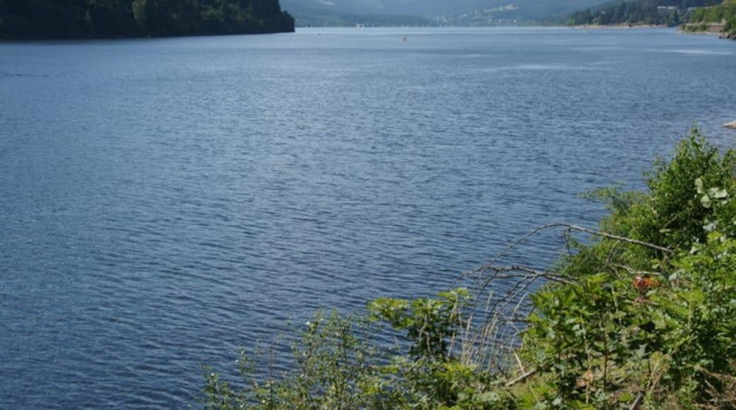 """Foto """"Lake Schluchsee"""" von Mike Pennington on geo.hlipp.de (CC BY-SA)/zugeschnittenes Original"""
