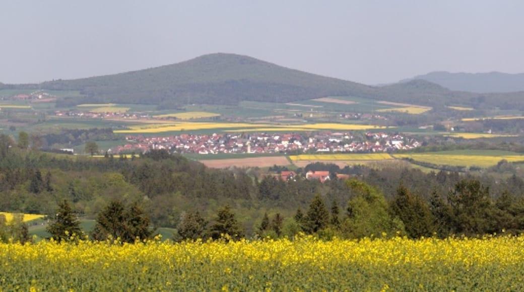 "Foto ""Hünfeld"" von UuMUfQ (CC BY-SA)/zugeschnittenes Original"