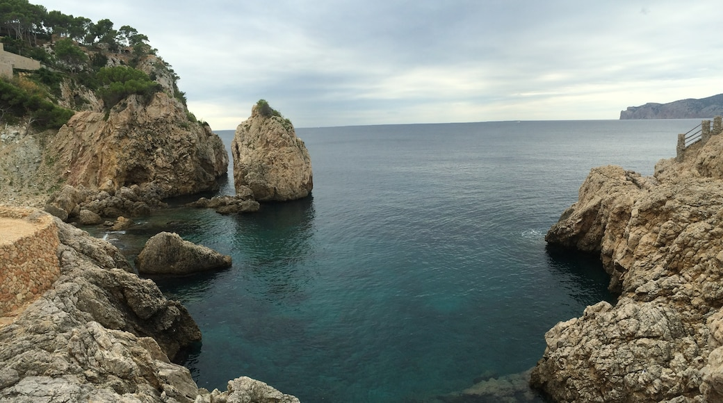 """Photo """"Santa Ponsa"""" by Sergei Gussev (CC BY) / Cropped from original"""