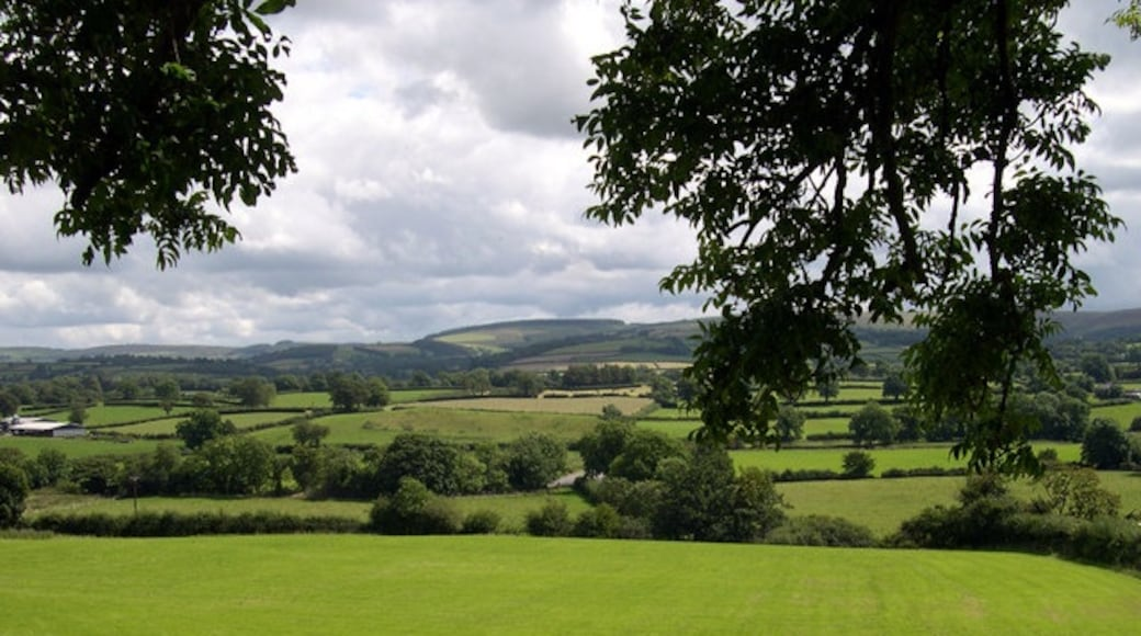 """Photo """"Llanybydder"""" by John Duckfield (CC BY-SA) / Cropped from original"""