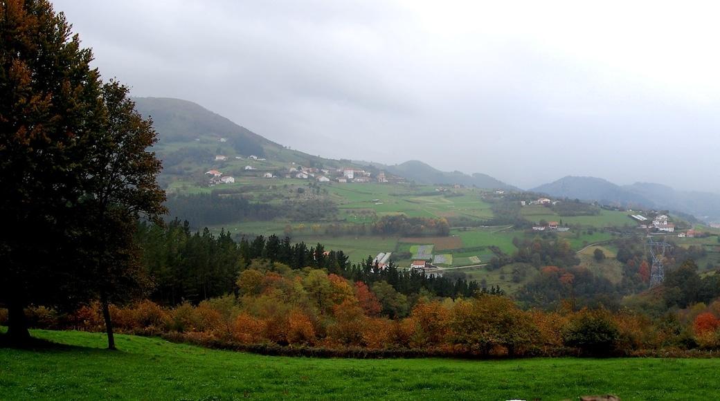 Foto 'Tolosa' van auggie_tolosa (CC BY-SA) / bijgesneden versie van origineel