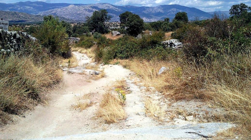 """Photo """"Colmenar Viejo"""" by r_santos (CC BY-SA) / Cropped from original"""