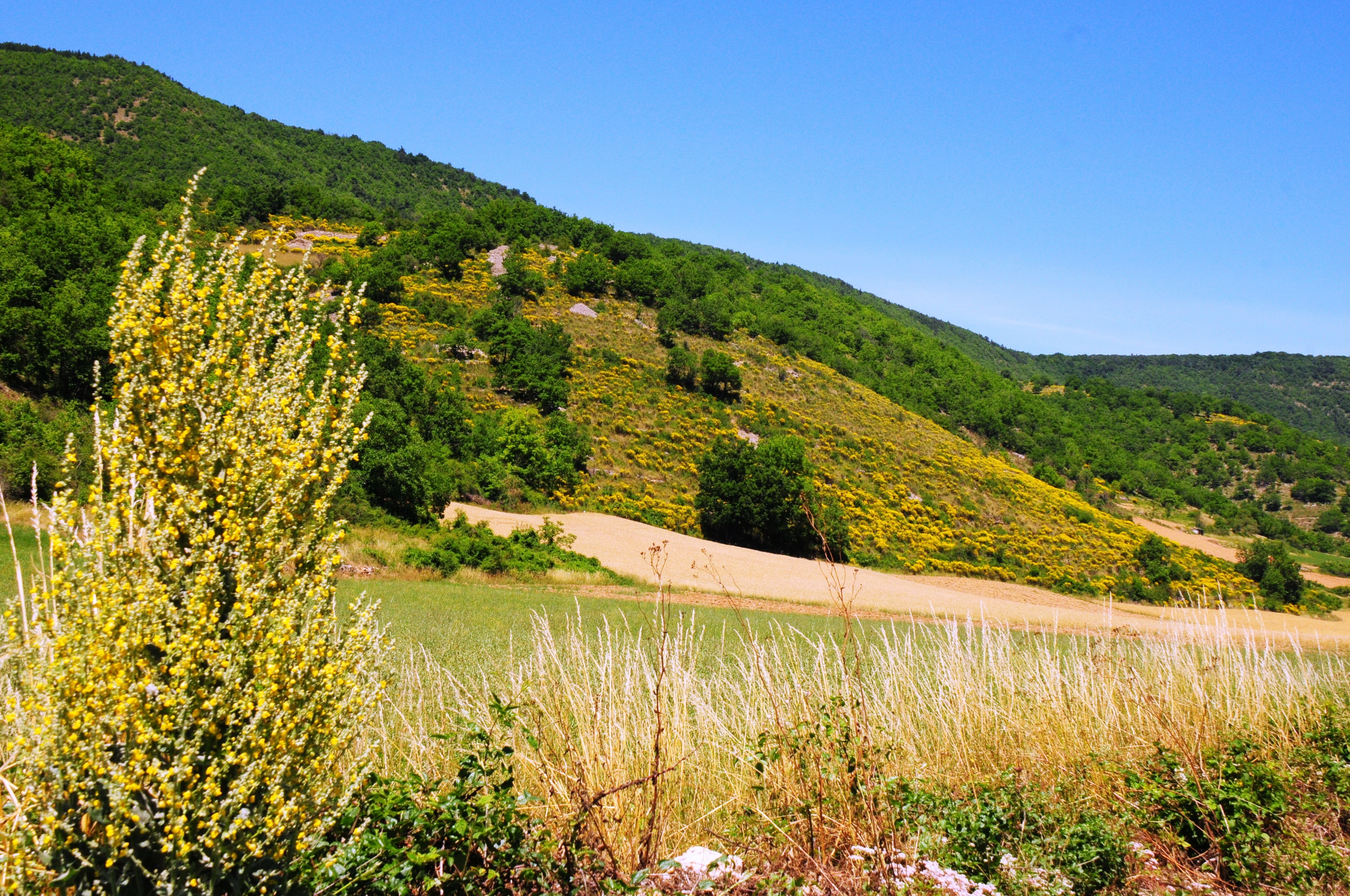 Larzac et Vallées, Aveyron, France