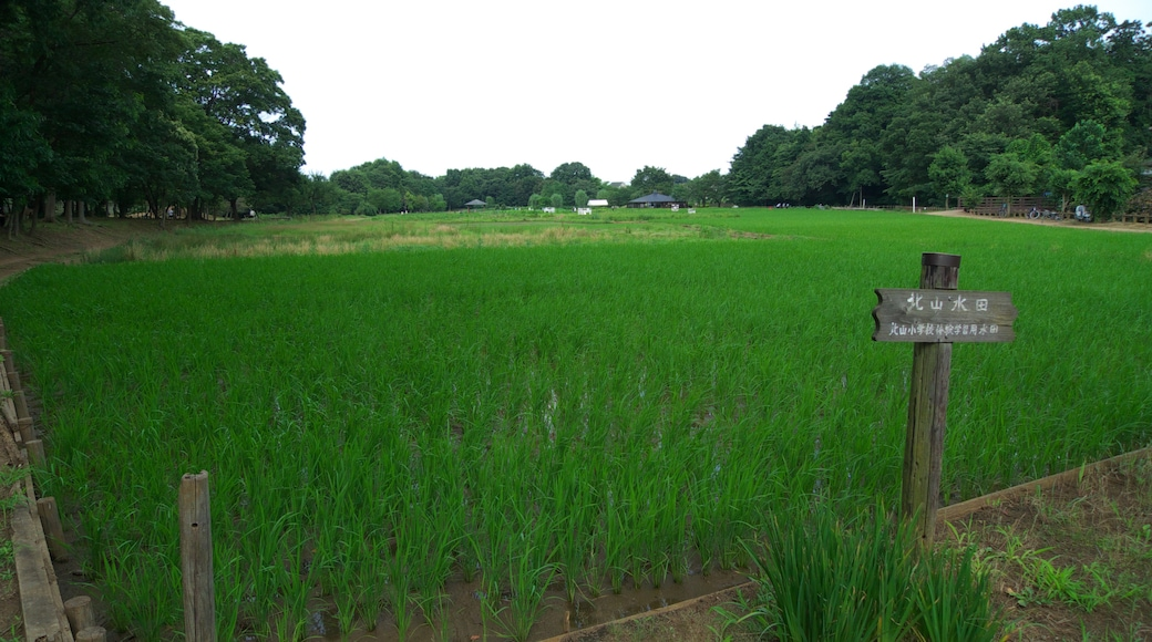 """照片""""东村山市"""" 拍摄者:Yasu(CC BY-SA)原片经过裁剪"""