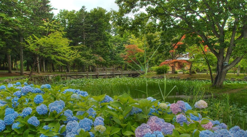 "Foto ""Iwamizawa"" de t-konno (CC BY-SA) / Recortada do original"