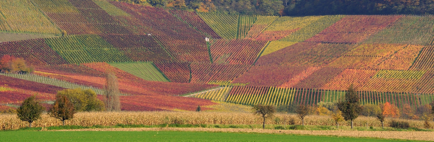 Brackenheim, Germany