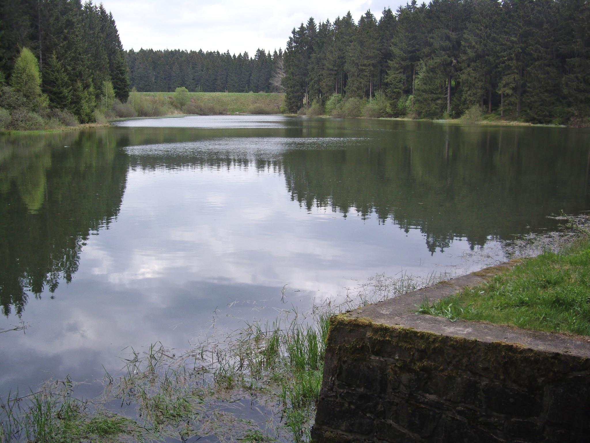 Clausthal-Zellerfeld, Ala-Saksi, Saksa