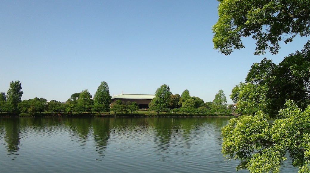 "Photo ""Kairakuen Park"" by CyberOyaji (CC BY-SA) / Cropped from original"
