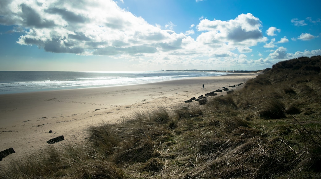 """Photo """"Druridge Bay Country Park"""" by Michael Whitehead (CC BY) / Cropped from original"""