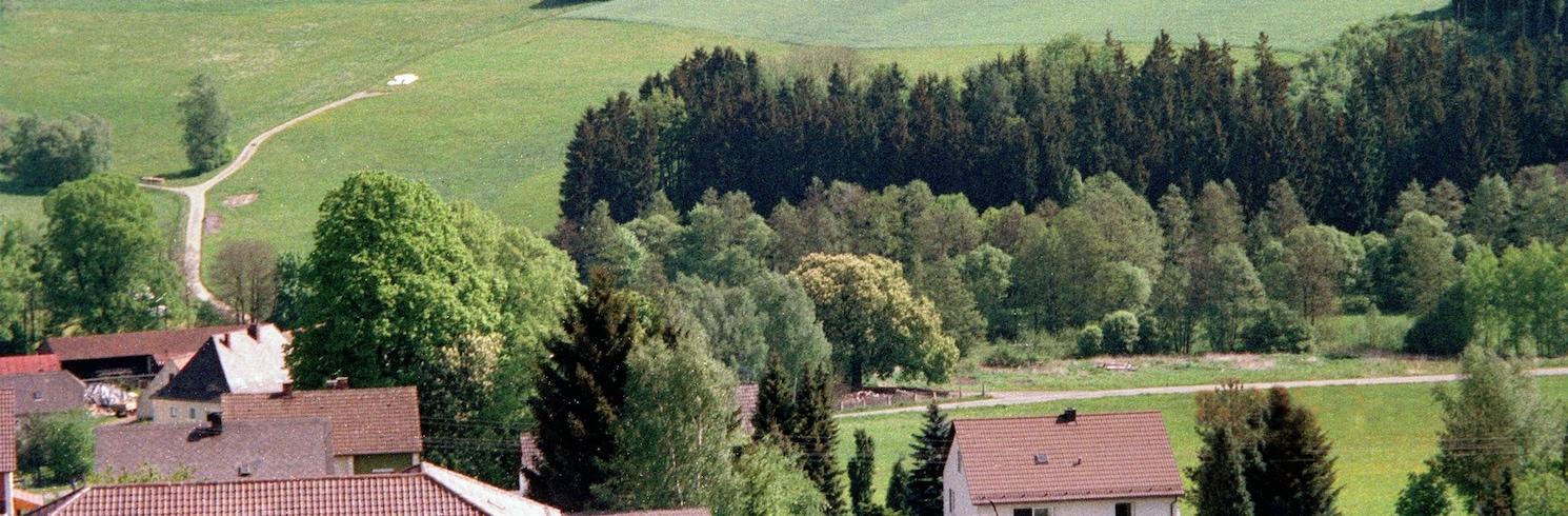 Pleystein, Németország