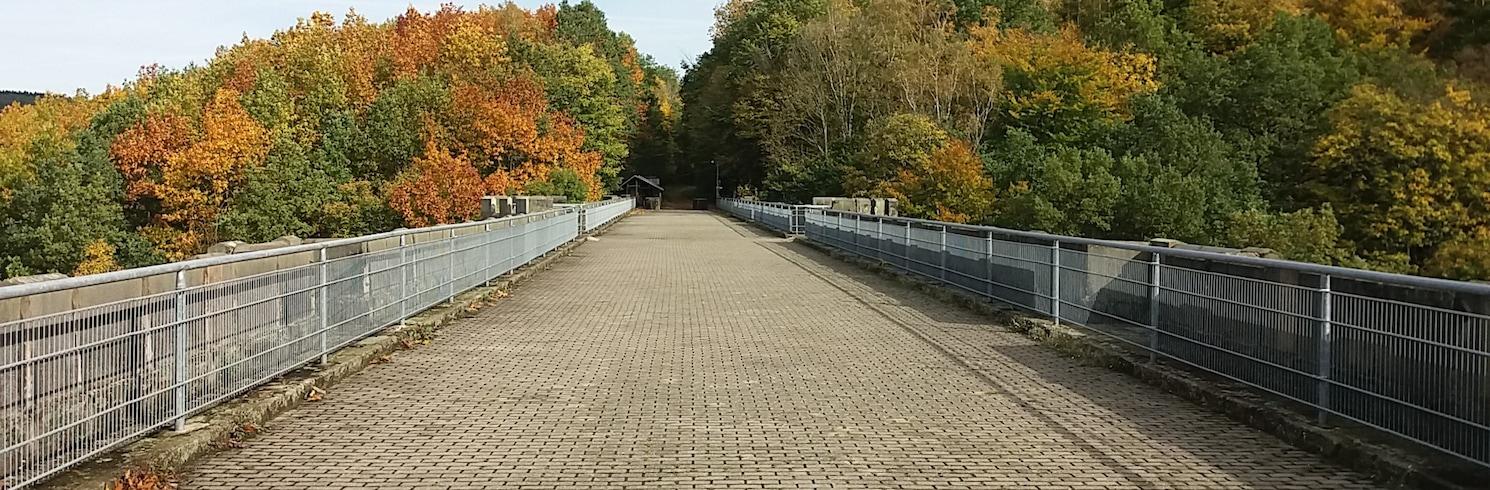 Falkenau (法尔克瑙), 德国