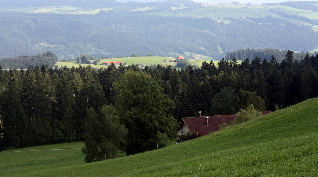 """Foto """"Scheidegg"""" von Dguendel (page does not exist) (CC BY)/zugeschnittenes Original"""