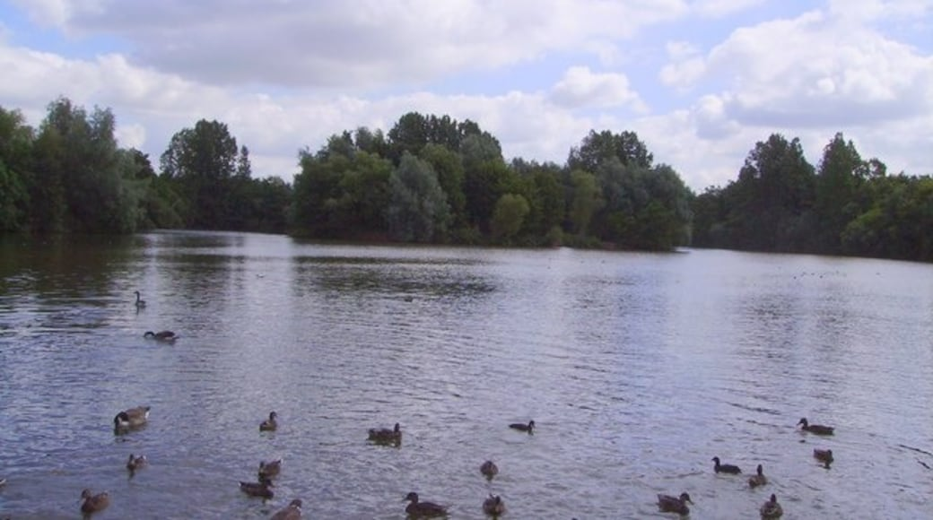 «Parc Ryton Pools Country Park», photo de Anthony Warren (CC BY-SA) / rognée de l'originale