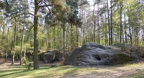 볼프스부르크